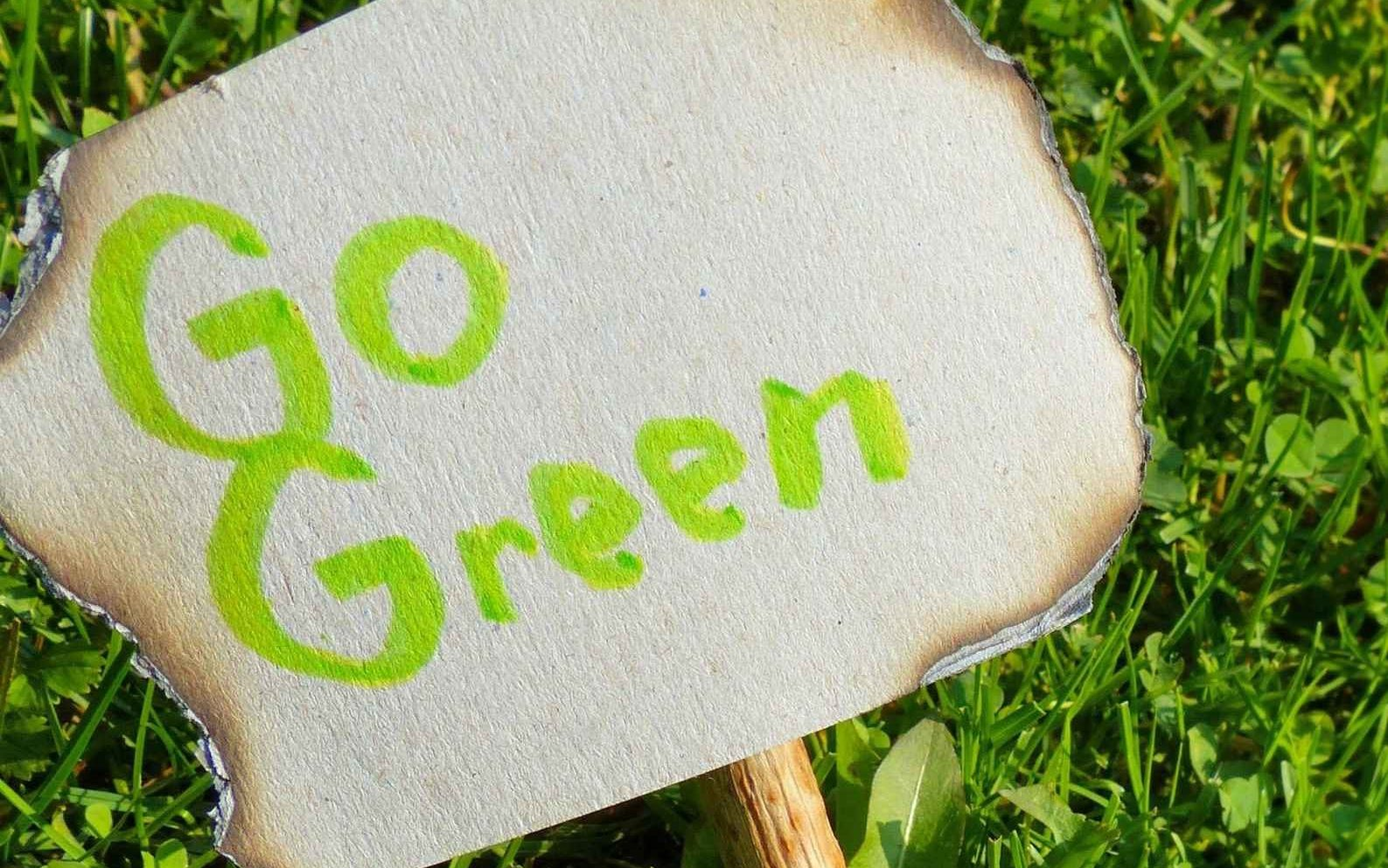 Another creative, often overlooked, way to pay for your home renovation is to go green